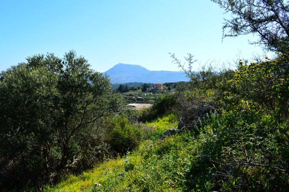 land-in-Apokoronas-Chania-Crete-for-sale-mountain-views-e412107c